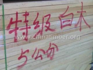 大量越南白木烘干木板