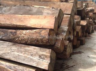 出售进口非洲安哥拉紫檀原木