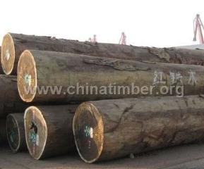 出售进口红铁木原木