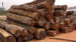 出售进口老挝花梨原木