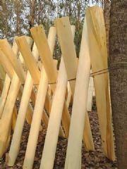 杨木面板/板皮