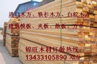 美国进口铁杉木方