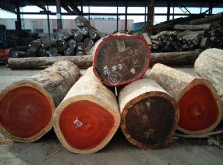 大量优惠供应非洲红花梨/紫檀原木原材进口木材