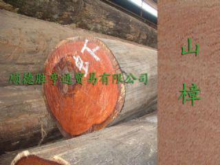 大量优惠供应山樟/冰片香原木原材进口木材