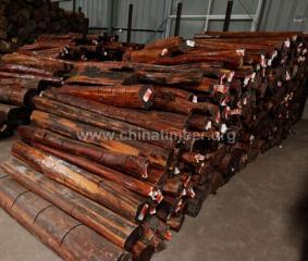 苏里南蛇纹木原木