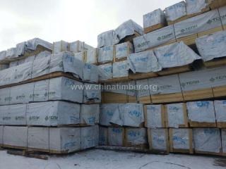 俄罗斯樟子松落叶松板材原料