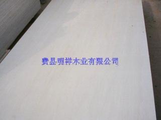漂白杨木面皮胶合板