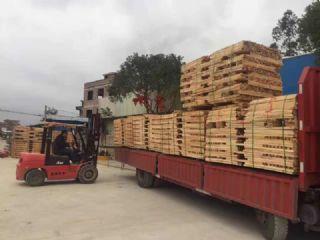 厂家直销榉木规格可定制AB级别