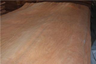 辐射松木皮(面皮)