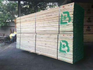 供应美国黄杨木板材货源充足