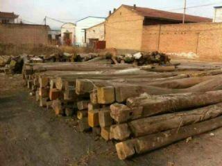 新旧榆木原木,原木老梁