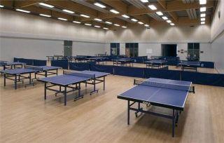 乒乓球专用塑胶地板