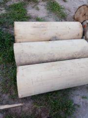 新采伐欧洲椴木原木
