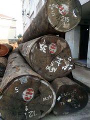 非洲红花梨原木报价 红花梨板材加工厂韵桐木业