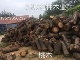大批量供应优质桃木原木 多用于雕刻工艺品