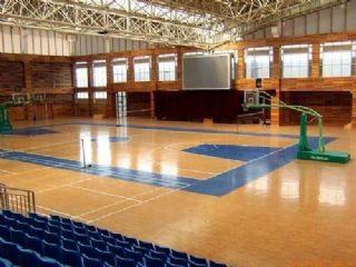 篮球专用地板胶