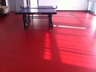 室内乒乓球pvc地胶