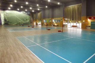 专用羽毛球运动地板