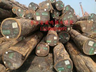 张家港现货供应非洲鸡翅木原木 鸡翅木板材 鸡翅木木