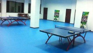 乒乓球专用地板胶