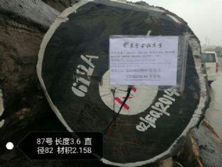张家港一手货源供应非洲无虫眼鸡翅木原木