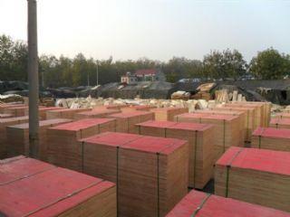 建筑模板小红板厂房专用
