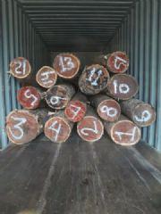 南美红檀香原木