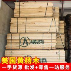 美国黄杨木 北美进口鹅掌楸木 零售批发