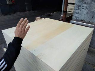 山西晋城轿车展览用木质地台板