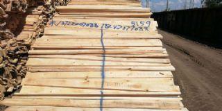 桦木22厚烘干板材