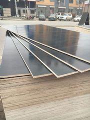 清水模板 胶合板