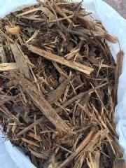 长期大量供应纸浆用木材料