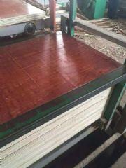 厂家直销酚醛胶建筑模板 板面光滑