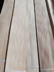 榆木木皮直纹,榆木直纹木皮,东北榆木木皮