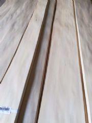 椴木直纹木皮,椴木木皮,椴木厚皮