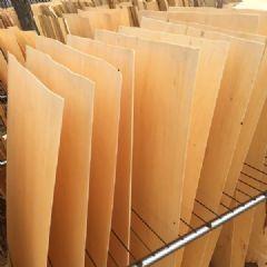 厂家直销杨木单板、板皮、木皮