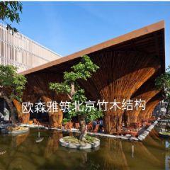 异形木建筑,异形竹屋,异形竹艺花架,竹艺结构,竹屋