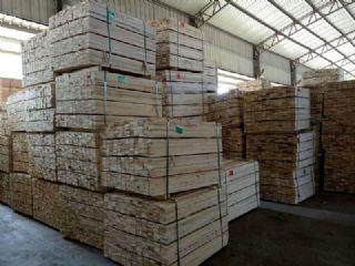 常州樟子松建筑木方