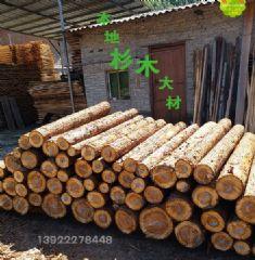 林场直供-本地香杉木材 原木 建筑木方木条