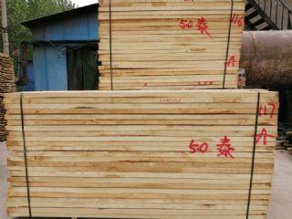 白椿木白杨木板材