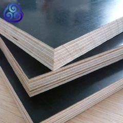 北京河北天津清水模板批发市场-建筑木模板直供