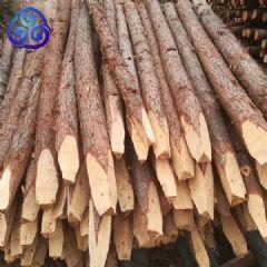 圆木桩订制护堤木桩驳岸木桩水利河道防汛原木桩批发市