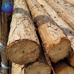 货场直供6米7米8米杉木杆杉杆高压线电网护线用沙杆