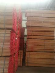 欧洲榉木供应商43mm厚直边榉木现货供应