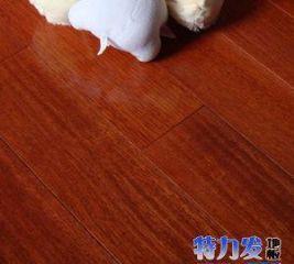 特力发地板-供应印尼菠萝格实木地板