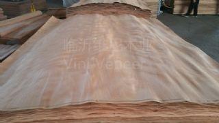奥古曼,冰糖果,桦木,铅笔柏旋切天然木皮