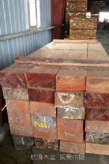 红梢木加工厂红梢木木材价格