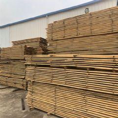进口原木加工板材湿料