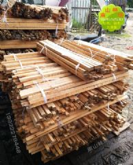 天然生态荷木木材荷木板材木方枝条加工定制厂家直