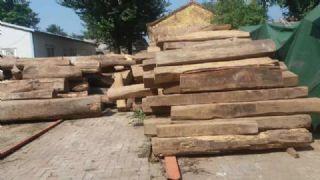 缅甸花梨木老木低价出售